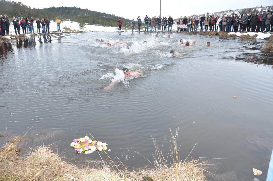 Tradicionalno dobar odziv plivača na izvoru Rzava Foto--ZC Popović