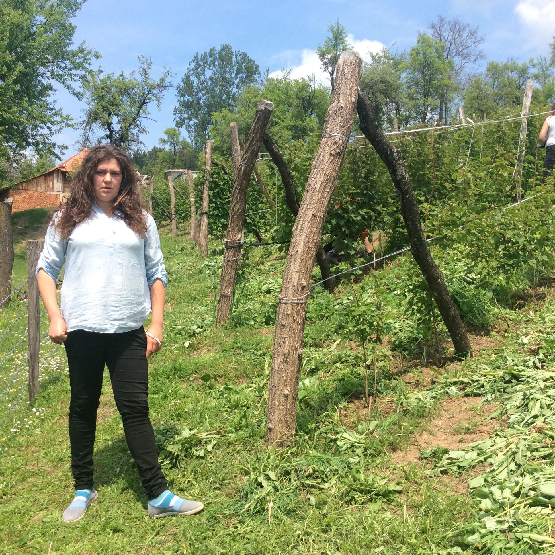 Mlada Dragica Ojdanić, posvećena je poslovima na imanju u Ravnima Foto--URP