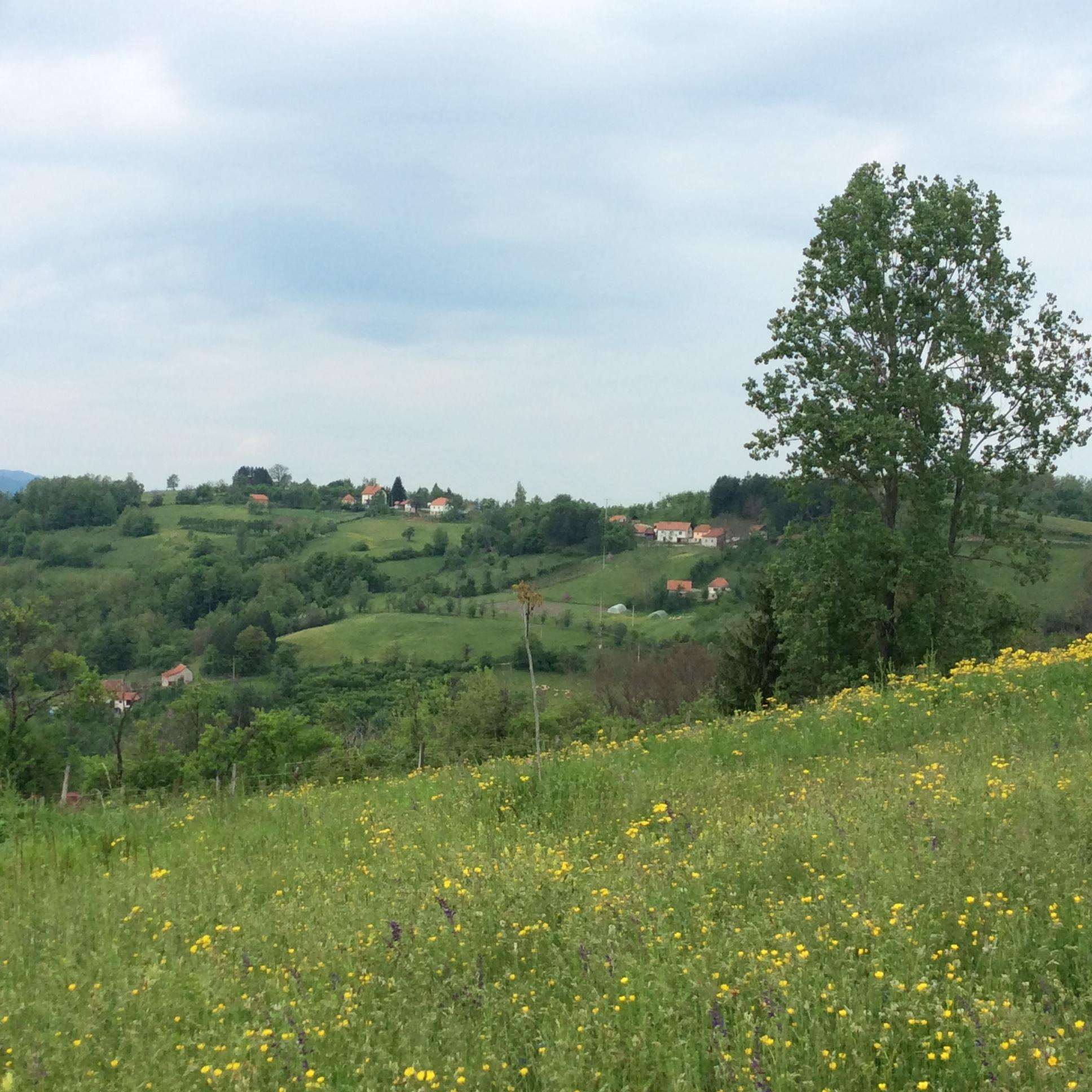 Iz zaseoka Ojdanići u Ravnima pogled puca ka ruralnim područjima opštine Čajetina, Arilje i Ivanjica Foto--URP