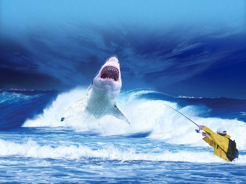 """""""Plavi kit"""" igrica koja je nastala u Rusiji vreba tinejdžere iz celog sveta"""