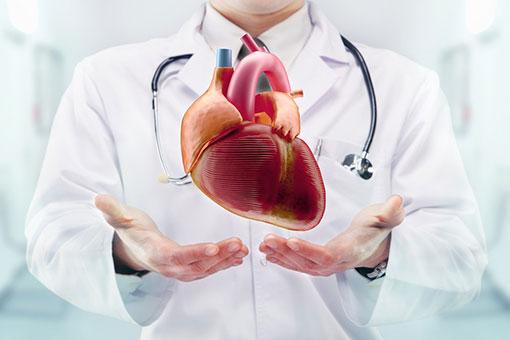 bolesti-srca