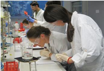 Tri studentkinje studijskog programa Inženjerstvo zaštite životne sredine u okviru CEEPUS boravile su tokom 2015. i 2017. godine na Stručnoj praksi na Fakultetu zdravstvenih nauka, Univerziteta u Ljubljani  Foto--V.M.