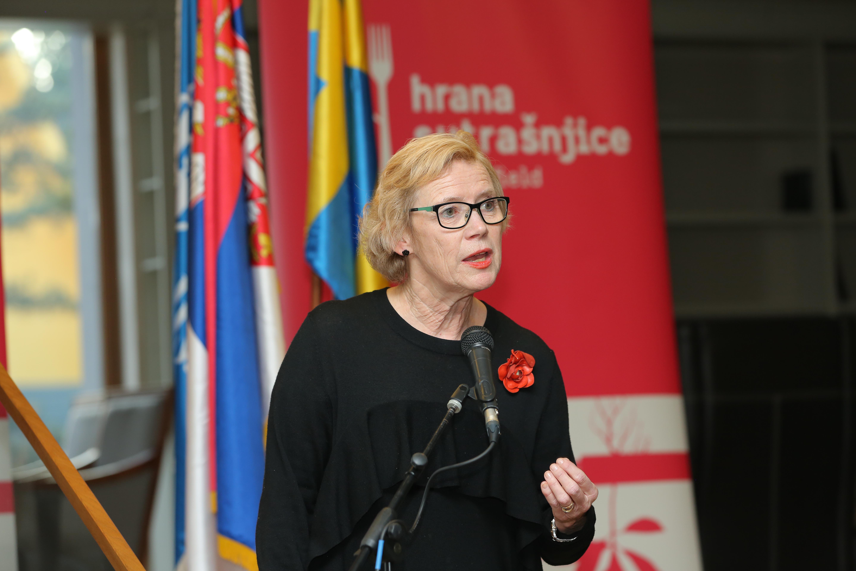Birgita Tenander Svedski institut